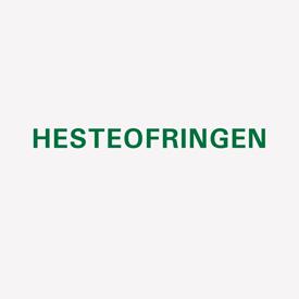 HENNING CHRISTIANSEN Hesteofringen cover